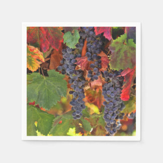 Fall Wine Vineyard Paper Cocktail Napkins Paper Napkin