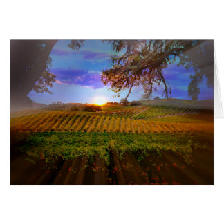 Fall Wine Vineyard Sunrise Blank Note Card