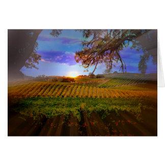 Fall Wine Vineyard Sunrise Blank Note Card