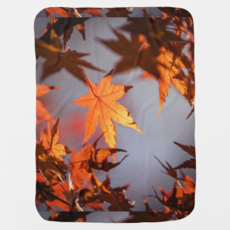 Fall Wonderland of Autumn Colour Baby Blanket