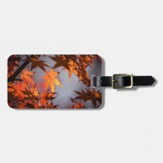 Fall Wonderland of Autumn Colour Luggage Tag