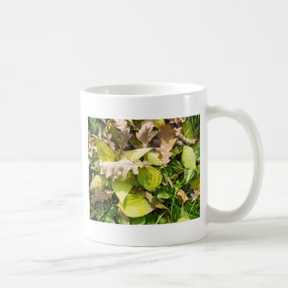Fallen autumn leaves on green grass lawn coffee mug