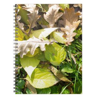 Fallen autumn leaves on green grass lawn notebook