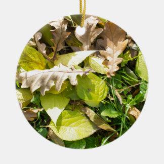Fallen autumn leaves on green grass lawn round ceramic ornament