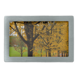 Fallen Fall Color Leaves on Parks Ground Belt Buckle