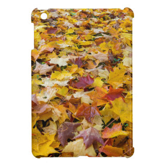 Fallen Fall Color Leaves on Parks Ground Case For The iPad Mini