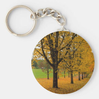 Fallen Fall Color Leaves on Parks Ground Keychain
