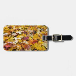 Fallen Fall Color Leaves on Parks Ground Luggage Tag