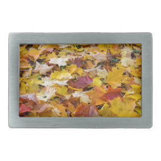 Fallen Fall Color Leaves on Parks Ground Rectangular Belt Buckle