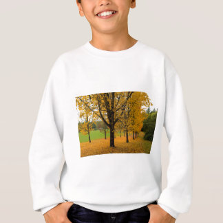Fallen Fall Color Leaves on Parks Ground Sweatshirt