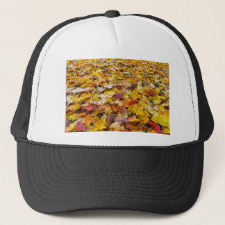 Fallen Fall Color Leaves on Parks Ground Trucker Hat
