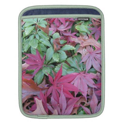 Fallen Japanese Maple leaves. iPad Sleeve