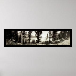 Fallen Leaf Lake Photo 1906 Poster