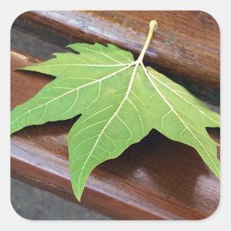 fallen leaf square sticker