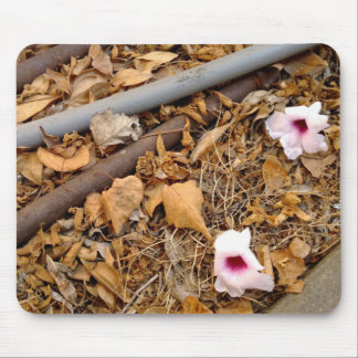 Fallen Leaves & Flowers on the Dirt Mouse Pad