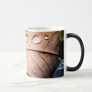 Fallen Leaves Magic Mug