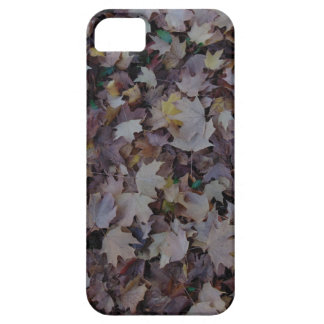 Fallen Maple Leaves Case For The iPhone 5