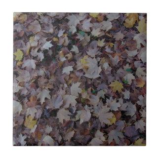 Fallen Maple Leaves Ceramic Tile