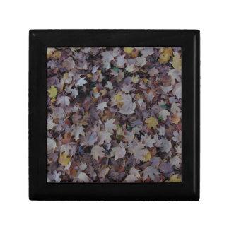 Fallen Maple Leaves Gift Box