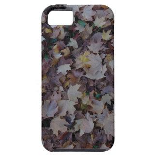Fallen Maple Leaves iPhone 5 Case