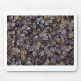 Fallen Maple Leaves Mouse Pad