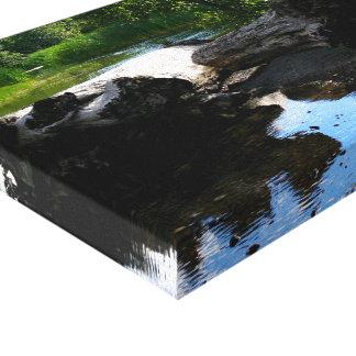 Fallen Timber _Coldwater Lake WA Canvas Print