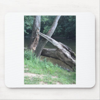 Fallen Tree Mouse Pad