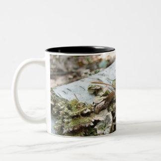 Fallen Tree Two-Tone Coffee Mug