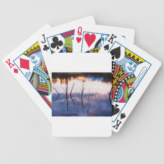 Fallen Twiggy Reflections Bicycle Playing Cards