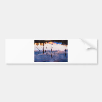 Fallen Twiggy Reflections Bumper Sticker