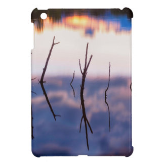 Fallen Twiggy Reflections iPad Mini Covers