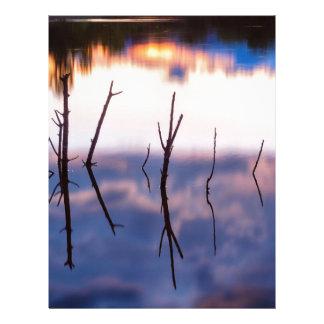 Fallen Twiggy Reflections Letterhead