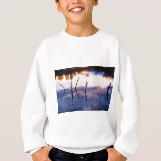 Fallen Twiggy Reflections Sweatshirt