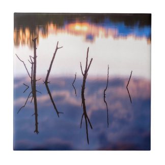 Fallen Twiggy Reflections Tile