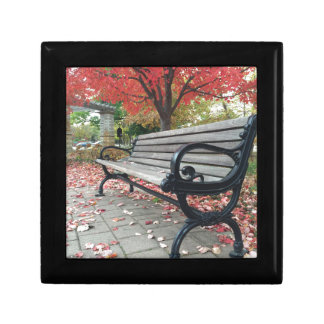 Falling Benches and Sitting Leaves Gift Box