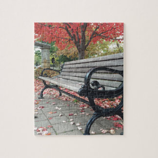 Falling Benches and Sitting Leaves Puzzle