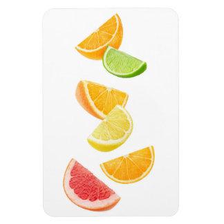 Falling citrus slices magnet