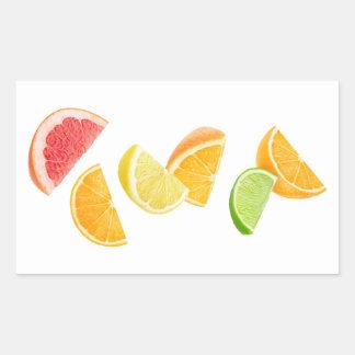 Falling citrus slices sticker