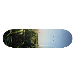 Falling into Alignment Custom Skate Board