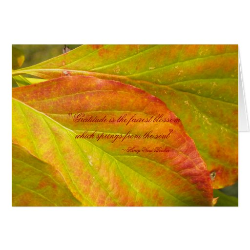 Falling Leaves Thank You Card