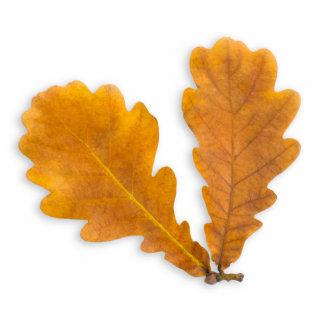 Falling oak leaves cut outs