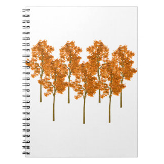 Falling Skies Spiral Note Book