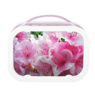 Falln Pink Floral Blossoms Lunch Box