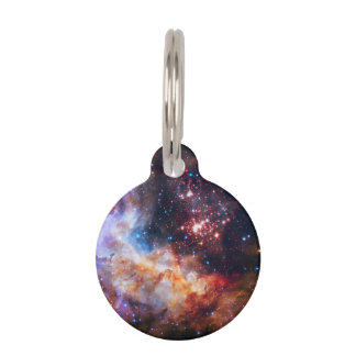 Falln Westerlund Star Field Pet Tag