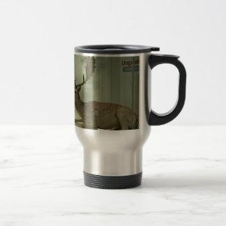 Fallow deer (Dama dama) 15 Oz Stainless Steel Travel Mug