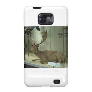 Fallow deer (Dama dama) Galaxy SII Cases