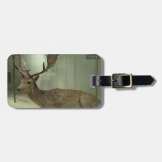 Fallow deer (Dama dama) Travel Bag Tag