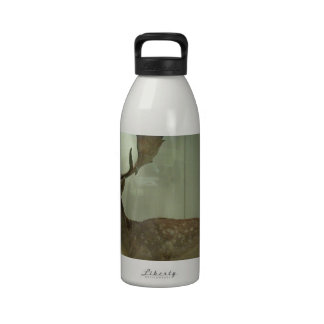 Fallow deer (Dama dama) Water Bottle