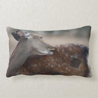 Fallow Deer in Falling Rain Phone Case Pillows