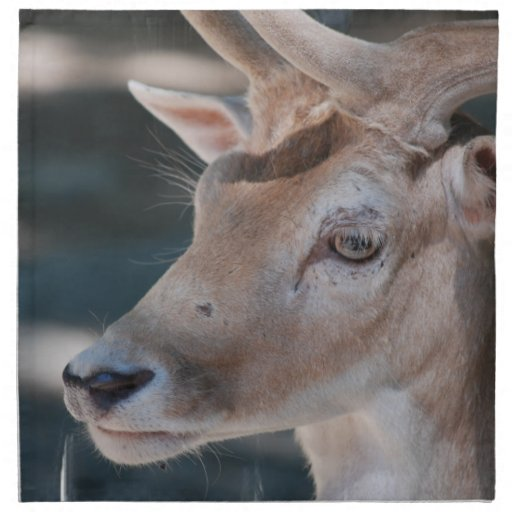 Fallow Deer Set of Four Napkins